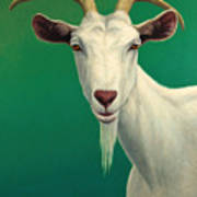Portrait Of A Goat Print by James W Johnson
