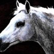 Portrait Of A Pale Horse Art Print