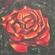 Portrait Of A Rose 2 Art Print