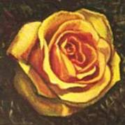 Portrait Of A Rose 5 Art Print