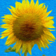 Portrait Of A Sunflower Art Print