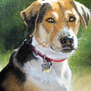 Portrait Of Lucy In Nj Art Print