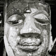 Portrait Of The Buddha Art Print