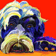 Portugese Water Dog 1 Art Print