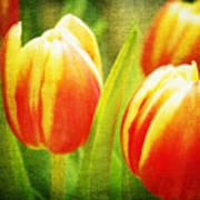 Power Of Spring Art Print