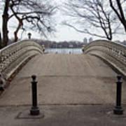 Power Walking In Central Park Art Print