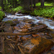 Powerful Spring Runoff Art Print