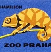 Prague Zoo Chameleon Matchbox Label Art Print