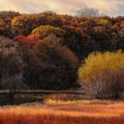 Prairie Autumn Stream Art Print