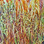 Prairie Grasses Art Print