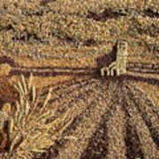 Prairie Harvest Art Print