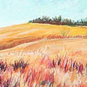 Prairie IIi Art Print by Lucinda  Hansen