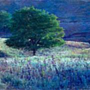 Prairie Trees Impressionistic Grunge Art Print