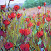 Praising Poppies Art Print