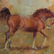 Prancing Bay Art Print