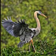 Prancing Heron Art Print