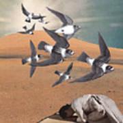 Prayer Flight Art Print
