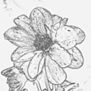 Pretty Flower Art Print