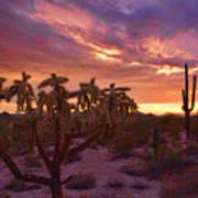 Pretty In Pink Desert Skies  Art Print