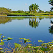 Tranquil Lake In Florida Art Print