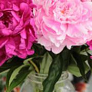 Pretty Pink Peonies In Ball Jar Vase Art Print