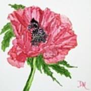 Pretty Poppy Art Print