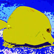 Pretty Yellow Fish Art Print