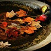 Priceless Leaves Fall Art Print