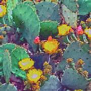 Prickly Pear Cactus 2 Art Print