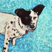 Primrose Water Love Art Print