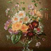 Primulas In A Glass Vase  Art Print