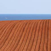 Prince Edward Island Fields 5645 Art Print