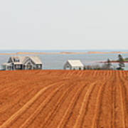 Prince Edward Island Fields 5668 Art Print