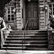 Princeton University Nassau Hall Tigers Art Print