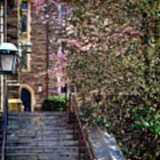 Princeton University Old Stairway Art Print