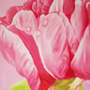 Prints Art For Sale Floral Oil Painting Pink Art Print