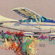 Private Plane Art Print