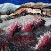 Provence 675458 Art Print