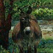 Provence Donkey Art Print