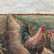 Provence Roosters Art Print