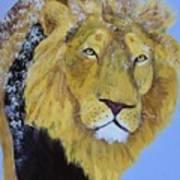 Prowling Lion Art Print