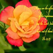 Psalm 34 V 19 Art Print