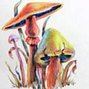Psychedelic Mushrooms Art Print
