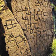 Puako Petroglyphs Art Print