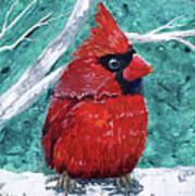 Pudgy Cardinal Art Print