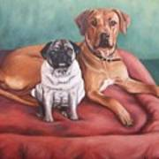 Pug And Rhodesian Ridgeback Art Print