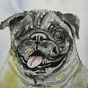 One Eyed Pug Portrait Art Print
