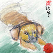 Puggle With Red Ball Art Print