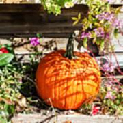 Pumpkin And Flowers Art Print