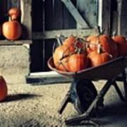 Pumpkin Family Art Print